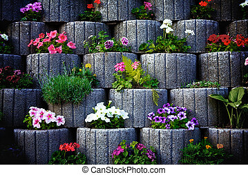 mur, pierre, parterre fleurs