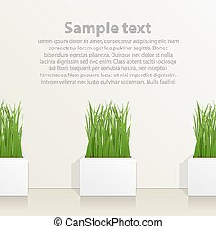 mur, pot, carrée, herbe, contre