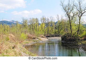 Mur river in styria (Austria). Springtime. European Alps.