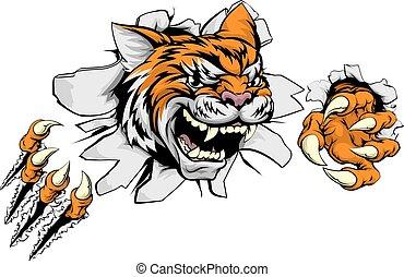 mur, sports, tigre, par, déchirer, mascotte