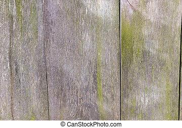 mur, usage, bois, fond, texture
