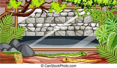 mur, vide, scène, zoo, pierre, serpents
