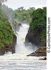 murchison, αλίσκομαι , μέσα , ουγκάντα
