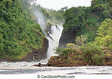 Murchison Falls - the Murchison Falls in Uganda (Africa)