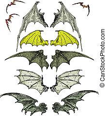 murciélago, alas