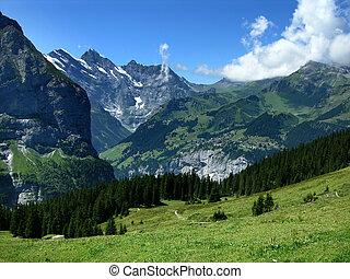 Murenn village in Switzerland Alps - Murren mountain village...