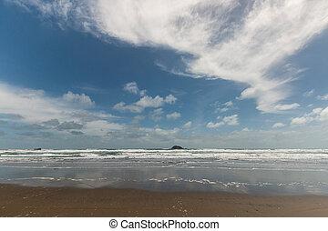 Muriwai beach in New Zealand