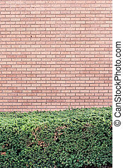 muro di mattoni