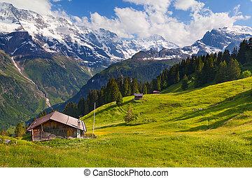 Murren in summer, famous Swiss resort