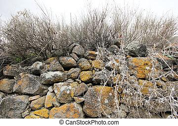 murs pierre, dans, une, vieux, jardin