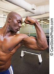 musc, shirtless, flexionar, muscular, homem