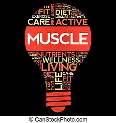 MUSCLE bulb word cloud collage, health concept background