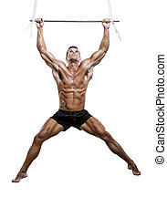 Muscle doing elevations