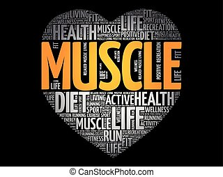 Muscle heart word cloud, fitness, sport, health concept