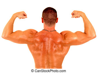 muscle man - back view of a man showing his muscles
