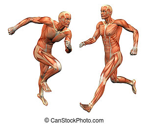muscle man w/ clipping mask - muscle man posing w/ clipping...
