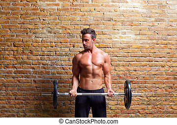 muscle shaped body man with weights on brick wall gym
