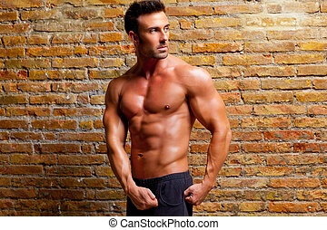 muscle shaped man posing on gym brick wall