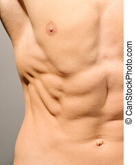 muscles, abdominal
