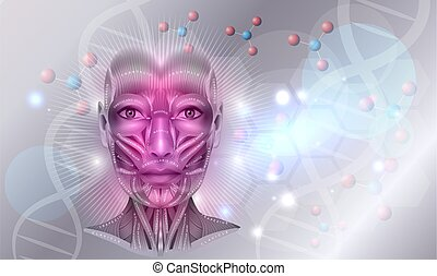 Muscles anatomy of the female face and neck abstract background