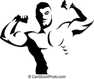 muscles, fléchir, bras, homme