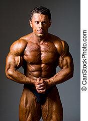 muscles, projection, sien, culturiste