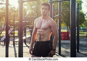 muscolare, modello, pacchi, dimostrare, maschio, proposta, sei, abs, shirtless, idoneità
