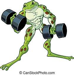 muscolare, rana, arricciamento, dumbbells