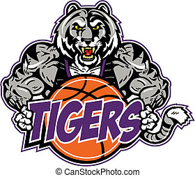 muscolare, tiger, con, pallacanestro