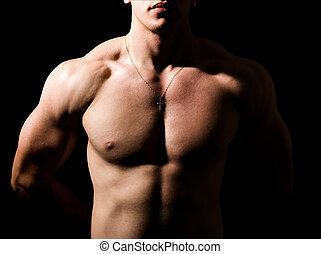 muscolare, uomo, sexy, scuro, shirtless, corpo