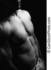muscular, abdome, homem, torso, excitado, corporal