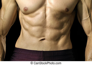 Closeup of muscular abs and torso of male athlete