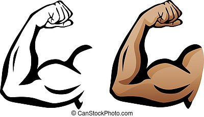 Sharp clean illustration of arm flexing with large muscles, both as a black line drawing and flesh color version.