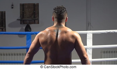 Muscular back professional boxer. Portrait of an athlete in the ring. slow motion