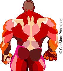 Muscular bodybuilder in a gym  - Muscular bodybuilder