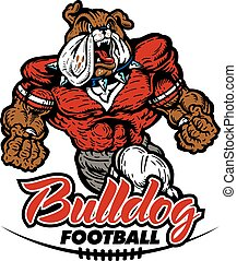 bulldog football - muscular bulldog football player team...