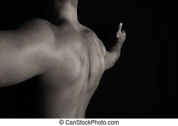 muscular, espalda, de, un, culturista
