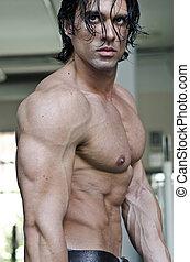 muscular, homem, shirtless, vista perfil