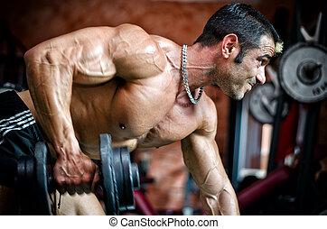muscular, macho, culturista, cálculo, en, gimnasio,...