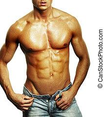 muscular, macho, torso