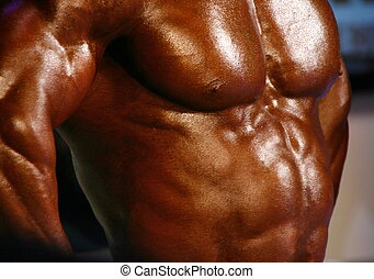 muscular male chest