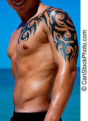 Muscular Male Torso - A man with a beautiful muscular body...