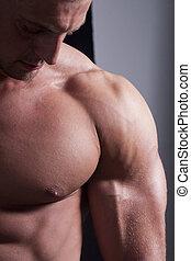 Muscular Male Torso - Muscular male torso , reall men...
