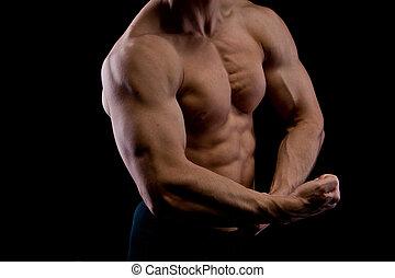 Muscular male torso of bodybuilder
