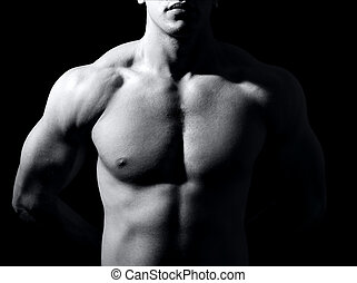 Muscular male torso on black background