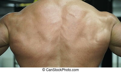 Muscular man bodybuilder posing with his back.