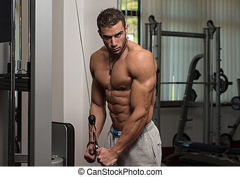 Muscular Man Doing Heavy Weight Exercise For Triceps