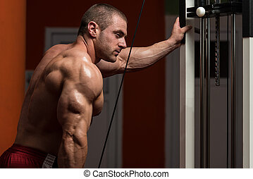 Muscular Man Doing Heavy Weight Exercise For Triceps - Young...