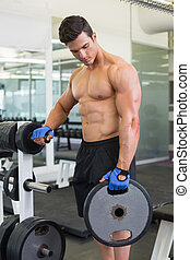 Muscular man lifting weight in gym