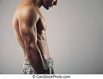 Muscular man torso on grey background with copy space -...